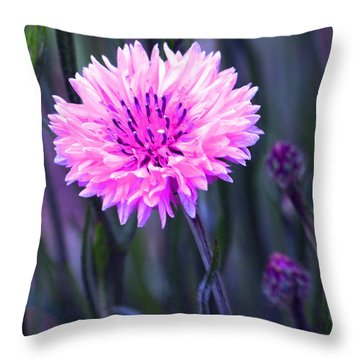 Brilliant Button Throw Pillow