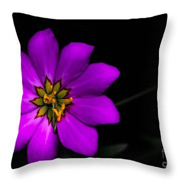 Brilliant Throw Pillow by Carlee Ojeda