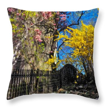 Brilliant Day Throw Pillow