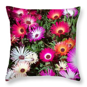 Throw Pillow featuring the photograph Brilliant Flowers by Chalet Roome-Rigdon
