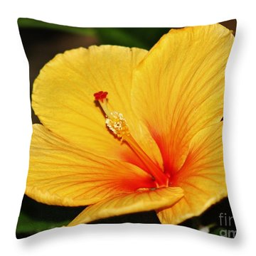 Brilliant Hibiscus II Throw Pillow by Craig Wood