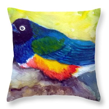Brilliant Starling Throw Pillow