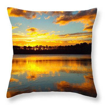 Brilliant Sunrise Throw Pillow by Dianne Cowen