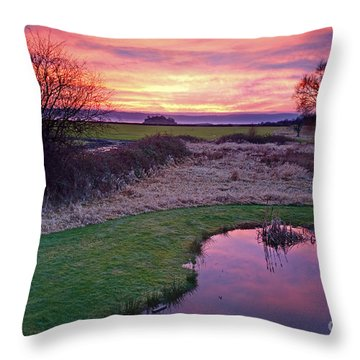 Brilliant Sunset With Pond Landscape Throw Pillow