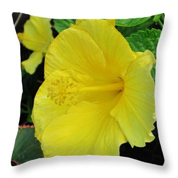 Brilliant Yellow Hibiscus Throw Pillow by Craig Wood