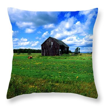 Brimley Farm Near  Sault Ste Marie Michigan  Throw Pillow