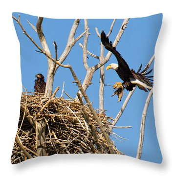 Bringing Up Baby Throw Pillow by Jim Garrison
