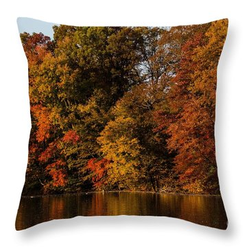 Brinton Lake Throw Pillow by Judy Wolinsky