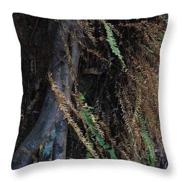 Brisa Throw Pillow