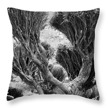 Bristles Throw Pillow by George Mount