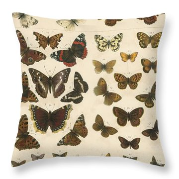 British Butterflies Throw Pillow by English School