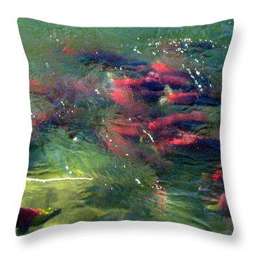 Throw Pillow featuring the photograph British Columbia Salmon Run  by Kathy Bassett