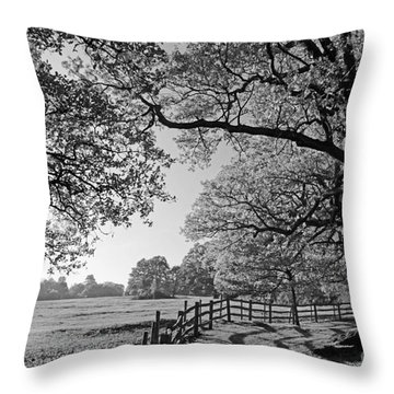 British Landscape Throw Pillow