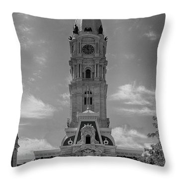 Broad And True Throw Pillow
