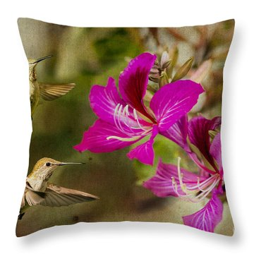Broad-tailed Hummingbirds At Play Throw Pillow by MaryJane Armstrong