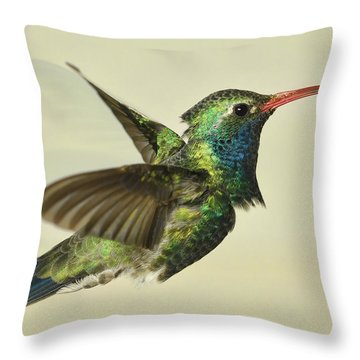Throw Pillow featuring the photograph Broadbill Hummingbird - Variant by Gregory Scott