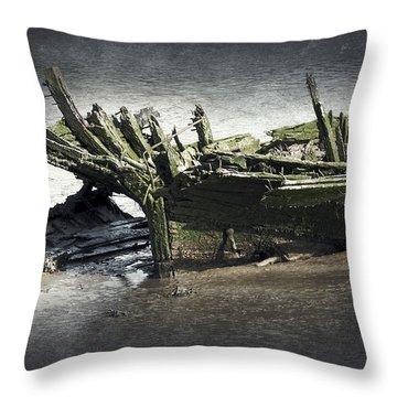Broken And Forgotten  Throw Pillow by Svetlana Sewell