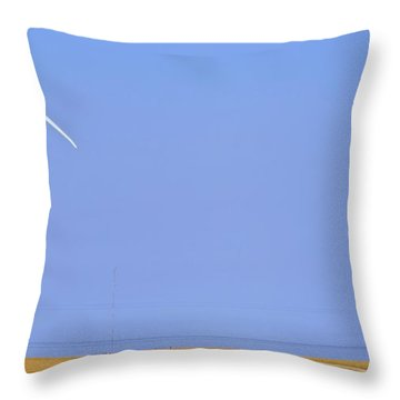 Throw Pillow featuring the photograph Broken Dream by Mick Flynn