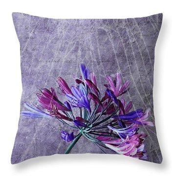 Broken Dreams Throw Pillow by Claudia Moeckel