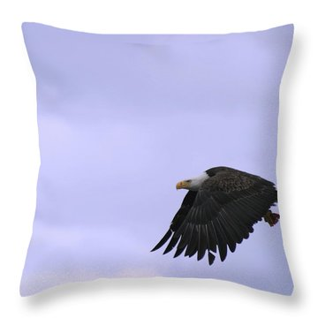 Broken Feather Eagle Throw Pillow by Kym Backland