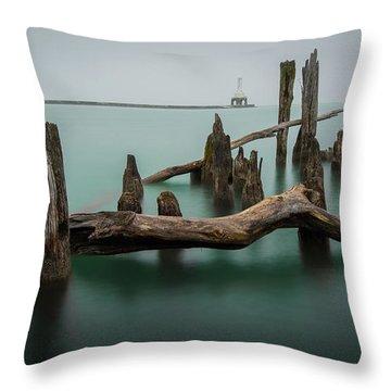 Port Washington Throw Pillows