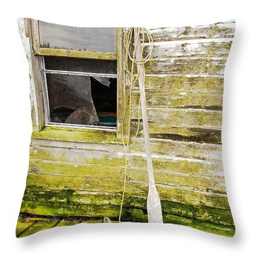 Broken Window Throw Pillow by Mary Carol Story