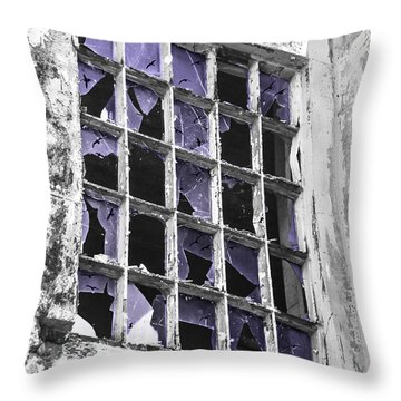 Broken Windows With Birds Throw Pillow