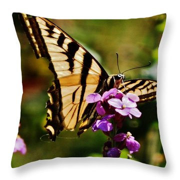 Broken Wing Throw Pillow by VLee Watson