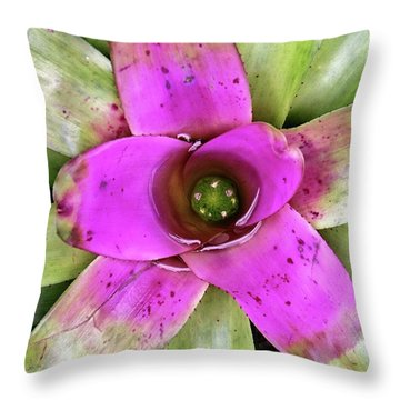 Throw Pillow featuring the photograph Bromeliad by Allen Beatty