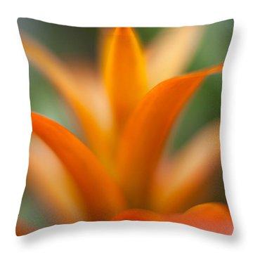 Bromeliad Flow Throw Pillow by Mike Reid