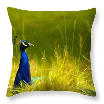 Bronx Zoo Peacock Throw Pillow