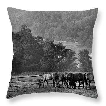 Throw Pillow featuring the photograph Broodmares by Joan Davis