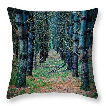 Brothers Grimm Forest Throw Pillow
