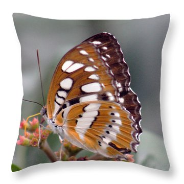 Brown And White Brushstrokes Throw Pillow