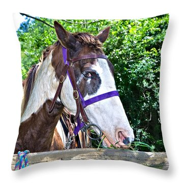 Throw Pillow featuring the photograph Brown And White Horse by Susan Leggett