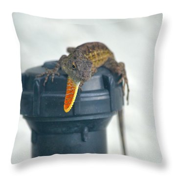 Brown Anole With Dewlap Throw Pillow by Richard Bryce and Family