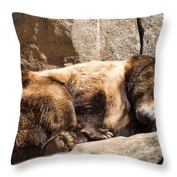 Brown Bear Asleep Again Throw Pillow by Chris Flees