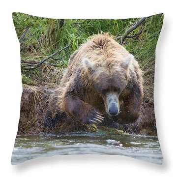 Brown Bear Diving Into The Water After The Salmon Throw Pillow by Dan Friend