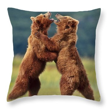 Brown Bears Sparring Throw Pillow by Frans Lanting MINT Images