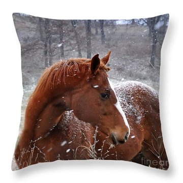 Snowing  Throw Pillow by Nava Thompson