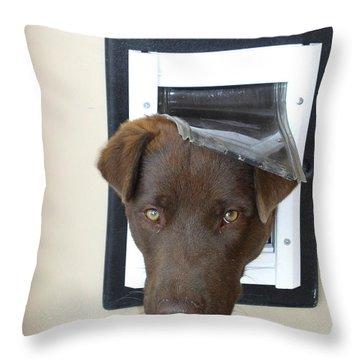 Brown Dog Throw Pillow by Gary Emilio Cavalieri