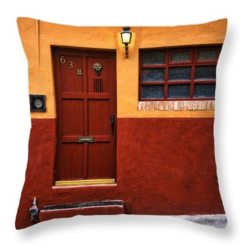Brown Door In Mexico Throw Pillow