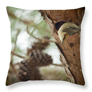 Brown Headed Nuthatch Throw Pillow by Linda Unger