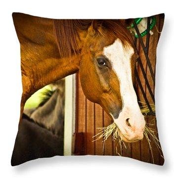 Brown Horse Throw Pillow by Joann Copeland-Paul