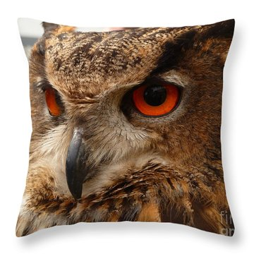 Throw Pillow featuring the photograph Brown Owl by Vicki Spindler