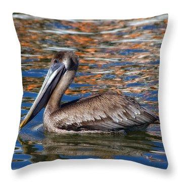 Brown Pelican - Florida Throw Pillow by Kim Hojnacki