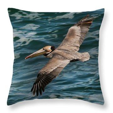 Brown Pelican Flying 1 Throw Pillow