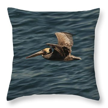 Brown Pelican Flying Panorama Throw Pillow