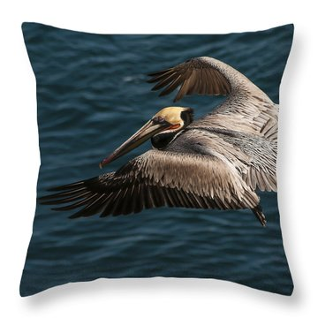 Brown Pelican Landing Throw Pillow