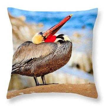 Brown Pelican Mating Season Display Throw Pillow